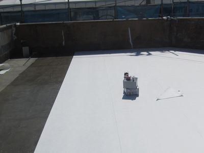 屋上からの雨漏り対策 防水シート張替え